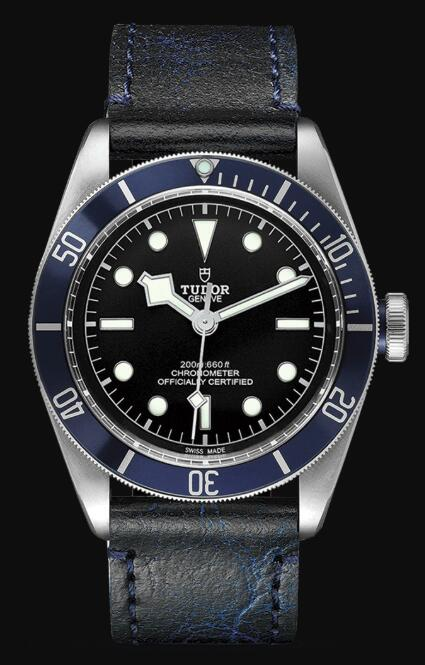 Tudor BLACK BAY M79230B-0007 Replica Watch