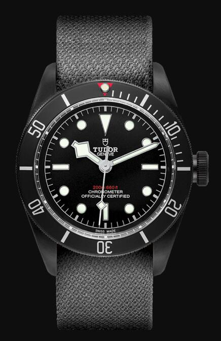 Tudor BLACK BAY DARK M79230DK-0006 Replica Watch