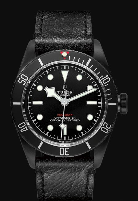 Tudor BLACK BAY DARK M79230DK-0007 Replica Watch