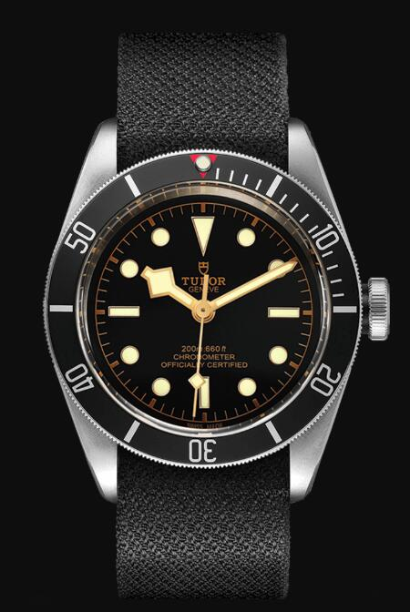 Tudor BLACK BAY M79230N-0005 Replica Watch