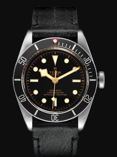 Tudor BLACK BAY M79230N-0008 Replica Watch