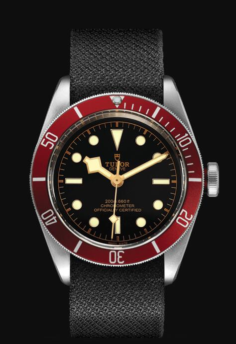 Tudor BLACK BAY M79230R-0010 Replica Watch