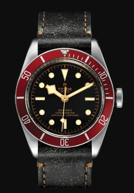 Tudor BLACK BAY M79230R-0011 Replica Watch