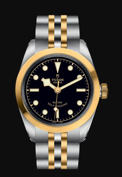 Tudor BLACK BAY 32 S&G M79583-0001 Replica Watch
