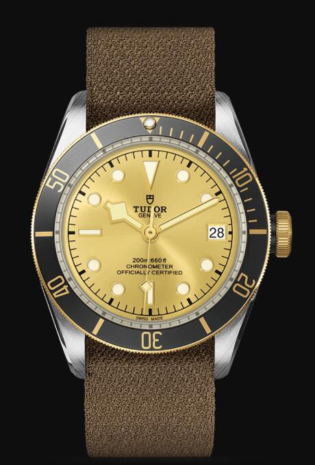 Tudor BLACK BAY S&G M79733N-0006 Replica Watch